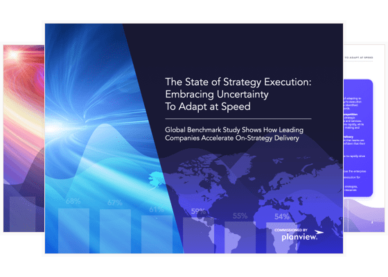 Slides from The State of Strategy Execution report